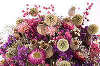 Assorted Dried Flowers