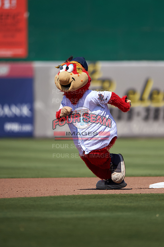 Inland Empire 66ers mascot Bernie entertains the crowd between innings of a California League game against the Lancaster JetHawks at San Manuel Stadium on May 20, 2018 in San Bernardino, California. Inland Empire defeated Lancaster 12-2. (Zachary Lucy/Four Seam Images)