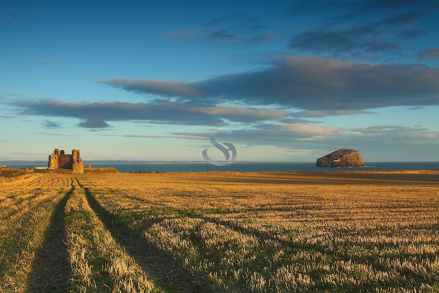 Bass Rock and Tantallon Castle near North Berwick on the East Lothian Coastline, Scotland<br /> <br /> Copyright www.scottishhorizons.co.uk/Keith Fergus 2011 All Rights Reserved