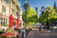 Streets of Nelson, Nelson Region, South Island, New Zealand