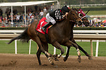 ARCADIA, CA  APRIL 7:  #1 Spiced Perfection, ridden by Joseph Talamo, battles #8 Show It N Moe It, ridden by Mike Smith in the stretch of the Evening Jewel Stakes on April 7, 2018 at Santa Anita Park Arcadia, CA.  (Photo by Casey Phillips/ Eclipse Sportswire/ Getty Images)
