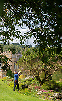 BNPS.co.uk (01202) 558833. <br /> Pic: CorinMesser/BNPS<br /> <br /> Pictured: Forde Abbey gardener Johanna Witts tends to a juniper tree in the Rock Garden. <br /> <br /> The team of three, all female, gardeners at Forde Abbey in Chard, Somerset have been kept busy tending to the award winning 900 year old gardens during the recent sunny spell.