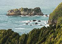 Arnott Point near Haast, UNESCO World Heritage Area, South Westland, New Zealand, NZ