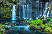 Tom Mackie, LANDSCAPES, LANDSCHAFTEN, PAISAJES, photos,+Asia, Japan, Japanese, Shiraito Falls, Shizuoka Prefecture, Tom Mackie, Worldwide, cascade, cascading, flow, flowing, green,+horizontal, horizontals, natural landscape, nobody, water, water's edge, waterfall, waterfalls, world wide, world-wide,Asia,+Japan, Japanese, Shiraito Falls, Shizuoka Prefecture, Tom Mackie, Worldwide, cascade, cascading, flow, flowing, green, horizo+ntal, horizontals, natural landscape, nobody, water, water's edge, waterfall, waterfalls, world wide, world-wide+,GBTM190616-1,#l#, EVERYDAY