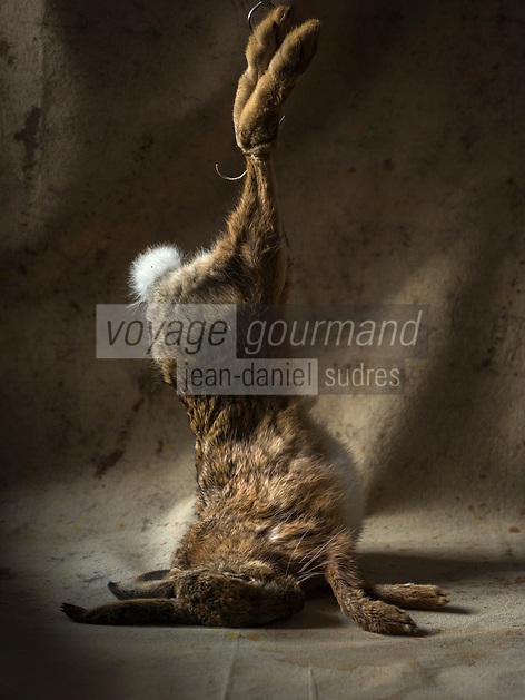 Gastronomie: Lièvre // Gastronomy: Hare <br /> - Stylisme : Valérie LHOMME