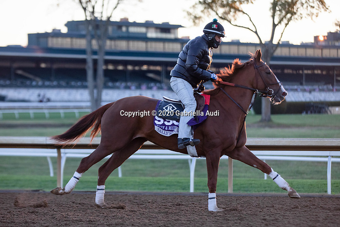 November 4, 2020: Sally's Curlin, trained by trainer Dale L. Romans, exercises in preparation for the Breeders' Cup Filly & Mare Sprint at Keeneland Racetrack in Lexington, Kentucky on November 4, 2020. Gabriella Audi/Eclipse Sportswire/Breeder's Cup/CSM