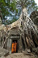 Monks at Angkor Wat, Ta Prohm:Brak, SorithyPrakchaiya,Prak, Sem, LA, Min, Sai, Sophen.