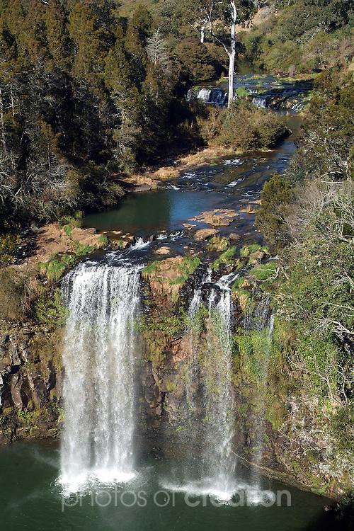 Dangar Falls, Dorrigo NSW