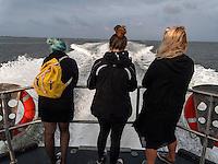 Bootsfahrt auf dem Lauwersmeer, Provinz Groningen, Niederlande