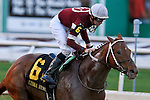 NEW ORLEANS, LA - FEBRUARY 20:<br /> Gun Runner #6, ridden by Florent Geroux wins the Risen Star Stakes in the Louisiana Derby Preview Race Day at Fairgrounds Race Course on February 20,2016 in New Orleans, Louisiana. (Photo by Steve Dalmado/Eclipse Sportswire/Getty Images)