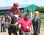 May 1 2015: Protonico with John Velazquez wins the 12th running of the Grade II Alysheba for 4-year olds & up, going 1 1/16 mile at Churchill Downs . Trainer Todd Pletcher. Sumaya U. S. Stables. Sue Kawczynski/ESW/CSM