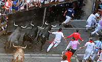 Participants run with Miura fighting bulls during the last San Fermin Festival´s running of the bulls, on July 14, 2013, in Pamplona, Basque Country. On each day of the eight San Fermin festival days six bulls are released at 8:00 a.m. (0600 GMT) to run from their corral through the narrow, cobbled streets of the old navarre town over an 850-meter (yard) course. Ahead of them are the runners, who try to stay close to the bulls without falling over or being gored. (Ander Gillenea / Bostok Photo)