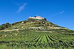 Germany, Baden-Wuerttemberg, Markgraefler Land, wine village Staufen; castle ruin Staufen nested on a hill