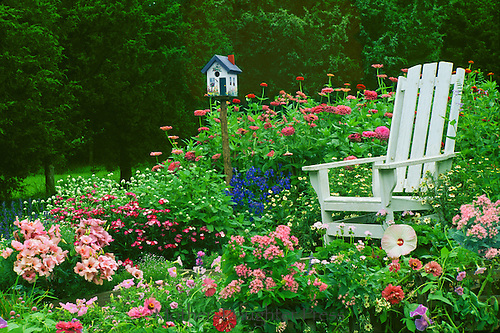 A whimsical garden spot to sit-- bright blooming flowers and a handpainted birdhouse