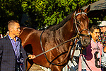 SEPT 06, 2021: HIGH OAK in the Gr.1 Hopeful  Stakes, for 2-year olds, going 7 furlongs, at Saratoga Racecourse, Saratoga Springs, New York. Sue Kawczynski/Eclipse Sportswire/CSM