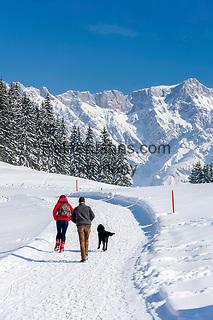 Oesterreich, Salzburger Land, Pinzgau, Maria Alm: Winterspaziergang auf der Jufenalm vorm Hochkoenig   Austria, Salzburger Land, Pinzgau, Maria Alm: winter walk at Jufenalm, at background Hochkoenig mountains