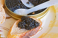 "A tin of black caviar with slices of bread and a spoon of mother-of-pearl to scoop up the precious eggs, caviar on a piece of the bread  ""Caviar et Prestige"" Saint Sulpice et Cameyrac  Entre-deux-Mers  Bordeaux Gironde Aquitaine France - at Caviar et Prestige"