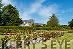 Tralee town park basking in the sunshine