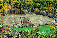 Farmer on tractor mowing field, Massachusetts, USA.