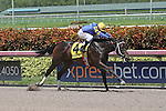 August 08, 2015:  #4 It's High Time (FL), with jockey Harry Hernandez on board wins the Florida Sire Stakes Desert Vixen Division at Gulfstream Park in Hallandale Beach, FL. Liz Lamont/ESW/CSM