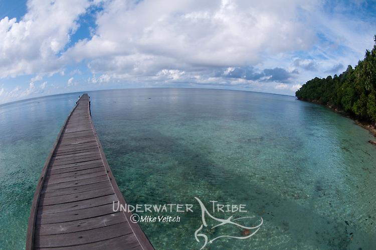 The welcoming pier at Jellyfish Lake, Jellyfish Lake, Kakaban Island, Berau, Kalimantan, Borneo, Indonesia, Pacific Ocean