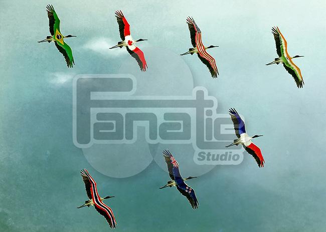 Illustrative image of birds flying in sky representing global business