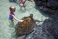 Little girl petting turtle in the water at Richardson Beach Park, Hilo, Big Island.