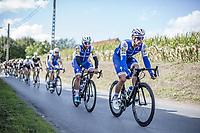 Iljo Keisse (BEL/Quick Step Floors) guiding Fernando Gaviria (COL/Quick Step Floors) through the peloton<br /> <br /> 102nd Kampioenschap van Vlaanderen 2017 (UCI 1.1)<br /> Koolskamp - Koolskamp (192km)