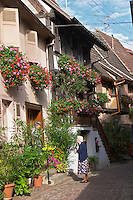 old woman in front of house with flowers eguisheim alsace france