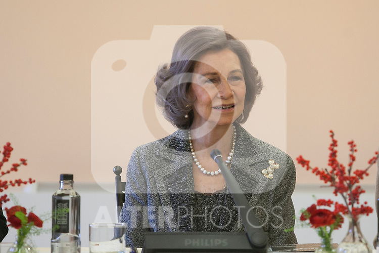 Queen Sofia of Spain attends the Reina Sofia Music School board meeting in Madrid, Spain. December 11, 2015. (ALTERPHOTOS/Victor Blanco)