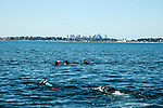 Volunteer scuba divers prepare to descend and harvest eelgrass within 1 square meter transects off Nahant, Massachusetts.