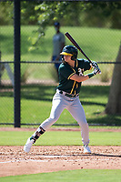 Oakland Athletics outfielder Noah Vaughan (23) at bat during an Instructional League game against the Los Angeles Dodgers at Camelback Ranch on October 4, 2018 in Glendale, Arizona. (Zachary Lucy/Four Seam Images)