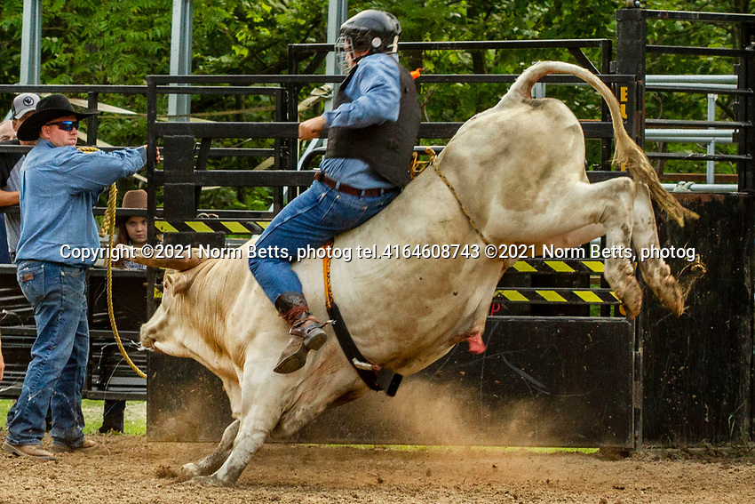 Build a Cowboy, a program organized to train young  rodeo fans to ride steers and bulls with an eye to competing in rodeo.