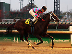 LOUISVILLE, KY -NOV 25: Finley'sluckycharm (Brian J. Hernandez Jr.) wins the 12th running of the Dream Supreme at Churchill Downs, Louisville, Kentucky. Trainer W. Bret Calhoun, owner Carl R. Moore Management LLC (Carl R. Moore.) (Photo by Mary M. Meek/Eclipse Sportswire/Getty Images)