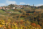 Italien, Piemont, Region Langhe, Weindorf Monforte d'Alba | Italy, Piedmont, Region Langhe, wine village Monforte d'Alba