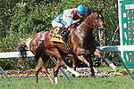 Laughing (IRE) with Rafael Bejarano up win the Grade III Taylor Made Matchmaker Stakes for 3-year olds, going 1 1/8 mile on the turf. Trainer Alan Goldberg.  Owner Richard Santulli