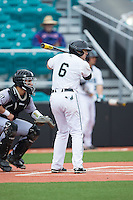 Connor Owings (6) of the Coastal Carolina Chanticleers at bat against the Bryant Bulldogs at Springs Brooks Stadium on March 13, 2015 in Charlotte, North Carolina.  The Chanticleers defeated the Bulldogs 7-2.  (Brian Westerholt/Four Seam Images)