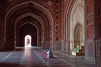 Agra, India.  Taj Mahal Mosque.  Imam Reading the Koran While Waiting for Prayer Time.  Mihrab (Prayer Niche Pointing toward Mecca) on the right.