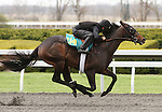 April 03, 2014: Hip 114 Blame - Hot Attraction consigned by Wavertree Stables worked 1/8 in 09:3 .  Candice Chavez/ESW/CSM