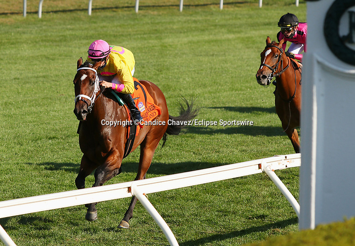 """Octover 07, 2020 : #7 Aunt Pearl (IRE) and jockey Florent Geroux win the 30th running of the JPMorgan Chase Jessamine Grade 2 $150,000 """"Win and You're In Juvenile Fillies Turf Division"""" for trainer Brad Cox at Keeneland Racecourse in Lexington, KY on October 07, 2020.  Candice Chavez/ESW/CSM"""