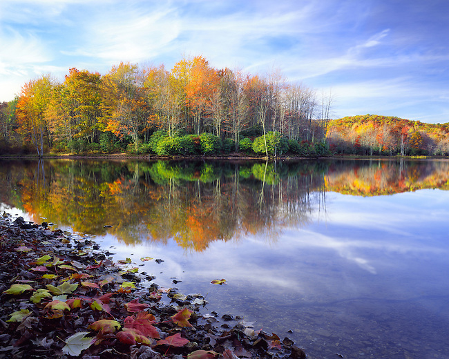 Autumn reflection in Laurel Bed Lake, Clinch Mountain Wildlife Management Area, VA