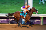 November 7, 2020 : Authentic, ridden by John Velazquez, wins the Longines Classic on Breeders' Cup Championship Saturday at Keeneland Race Course in Lexington, Kentucky on November 7, 2020. Scott Serio/Breeders' Cup/Eclipse Sportswire/CSM