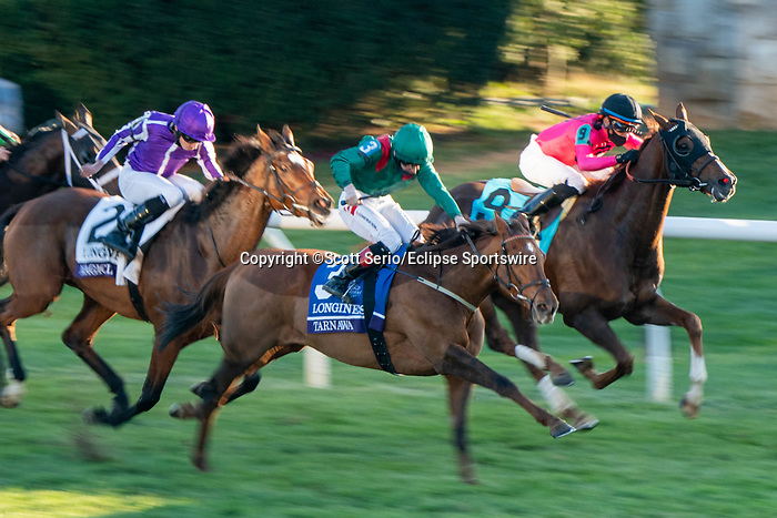 November 7, 2020 : Tarnawa, ridden by Colin Keane, wins the Longines Turfon Breeders' Cup Championship Saturday at Keeneland Race Course in Lexington, Kentucky on November 7, 2020. Scott Serio/Breeders' Cup/Eclipse Sportswire/CSM