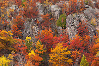Autumn's changing leaves add brilliant color along granite bluffs on the Keewenaw Peninsula, Michigan.