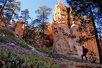 Navajo Trail, Bryce Canyon National Park,Utah