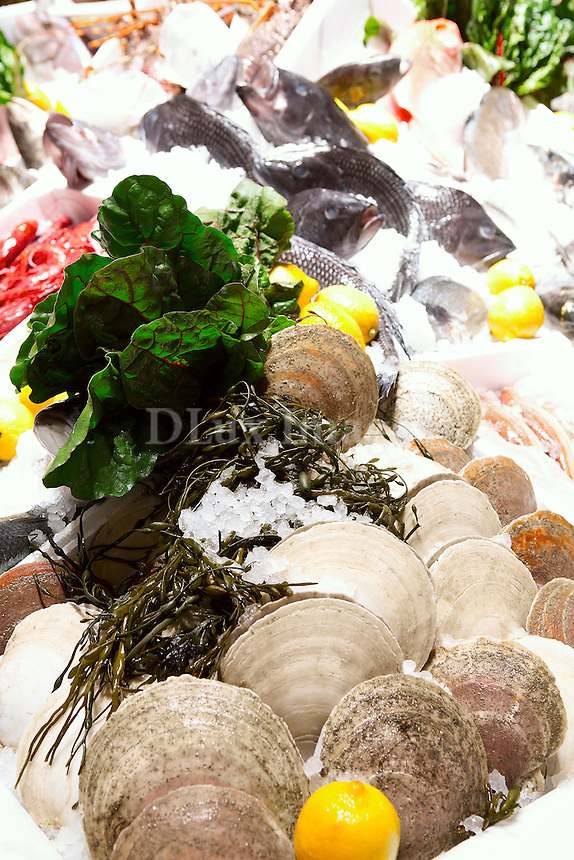 fresh fish and oysters