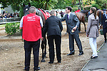 03.09.2011 The Irish Champion Stakes from Leopardstown. .The Aidan O'Brien trained So You Think is saddled in the pre-parade ring before winning the Red Mills Irish Champion Stakes