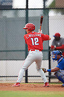 Philadelphia Phillies Luke Williams (12) at bat during an Instructional League game against the Toronto Blue Jays on September 30, 2017 at the Carpenter Complex in Clearwater, Florida.  (Mike Janes/Four Seam Images)