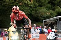Alessandro De Marchi (ITA/CCC) up the infamous Mur de Huy<br /> <br /> 84th La Flèche Wallonne 2020 (1.UWT)<br /> 1 day race from Herve to Mur de Huy (202km/BEL)<br /> <br /> ©kramon
