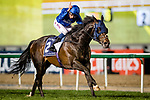 DUBAI, UNITED ARAB EMIRATES - MARCH 25: Jack Hobbs #2 ridden by William Buick (blue hat), wins the Longines Dubai Shemma Classic at Meydan Racecourse during Dubai World Cup Day on March 25, 2017 in Dubai, United Arab Emirates. (Photo by Douglas DeFelice/Eclipse Sportswire/Getty Images)